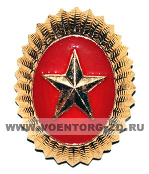 Кокарда овальная с золотой звездой на красном фоне