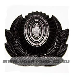 Кокарда ФСИН большая в обрамлении черная